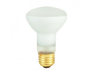 Bulbrite 292104 - 45R20SP2 - 45 Watt - 120 Volt - Incandescent - R20 - Medium (E26) - Clear - 2,600 Kelvin