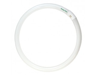 Bulbrite 502116 - FC16T9CW - 40 Watt - Fluorescent - T9 - 4-Pin (G10q) - 4,100 Kelvin (Cool White)