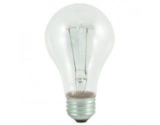 (2 Pack) Bulbrite 101025 - 25A/CL - 25 Watt - 130 Volt - Incandescent - A19 - Medium (E26) - Clear - 2,700 Kelvin