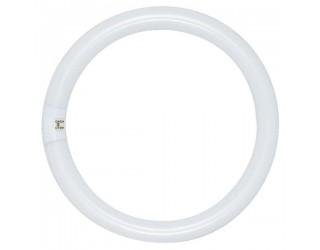 Satco HyGrade S2954 - FC16T9/WW/RS - Fluorescent Circline Lamp - 40 Watt - T9 - 4-Pin (G10q) - 3,000 Kelvin (Warm White)