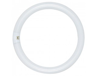 Satco S6502 - FC8T9/WW/RS - 22 Watt - Circline Fluorescent - T9 - 4-Pin (G10q) - 3,000 Kelvin (Warm White)