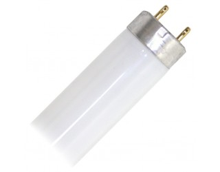 Sylvania 21770 - FO17/741/ECO - 17 Watt - Fluorescent - T8 - Medium 2-Pin (G13) - Cool White - Straight Tube - 4,100 Kelvin